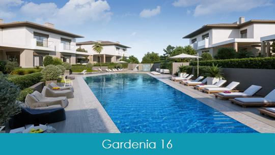 Gardenia 16